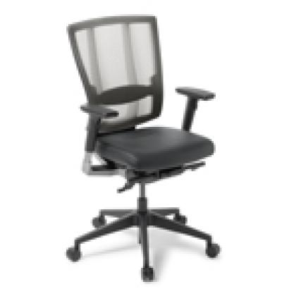 Cloud Ergo leather seat s